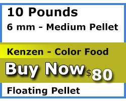 kenzen buy 10 pounds 4mm floating color food